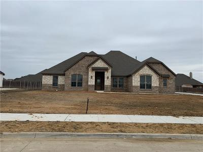 Waxahachie Single Family Home For Sale: 353 Equestrian Drive