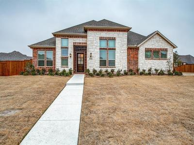 Prosper Single Family Home For Sale: 1230 Vista Run Drive