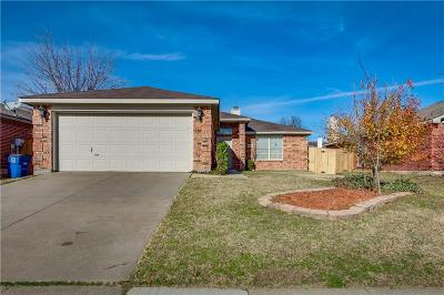 Little Elm Single Family Home For Sale: 1021 Port Mansfield Drive