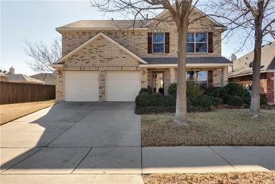 Denton Single Family Home For Sale: 5313 Brookside Drive