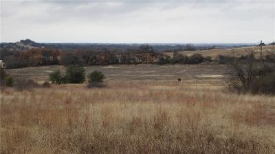 Springtown Residential Lots & Land For Sale: Tbd Windy Hill Lane