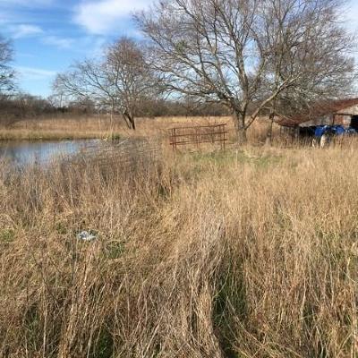 Josephine Farm & Ranch For Sale: 313 Caddo Street
