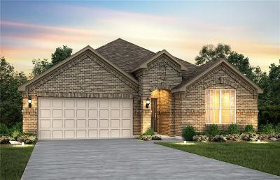 Single Family Home For Sale: 4840 Meadow Falls Drive