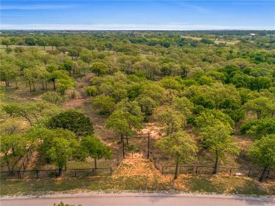 Weatherford Residential Lots & Land For Sale: Lot 9 Silver Saddle Circle