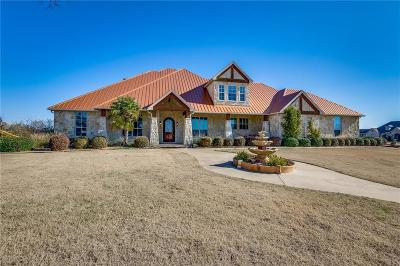Forney Single Family Home For Sale: 18022 Coolmeadow Lane