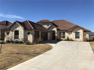 Granbury Single Family Home For Sale: 1213 Catalina Bay Boulevard