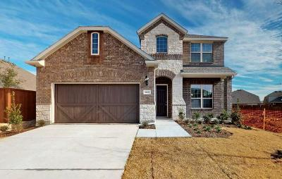 McKinney Single Family Home For Sale: 5609 Barrique Boulevard