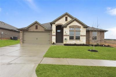 Weatherford Single Family Home For Sale: 2557 Silver Fox Trail Trail