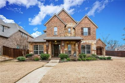Allen Single Family Home For Sale: 1623 Chisholm Trail