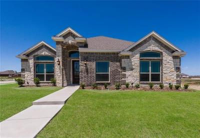 Waxahachie Single Family Home For Sale: 411 Wintergreen Drive