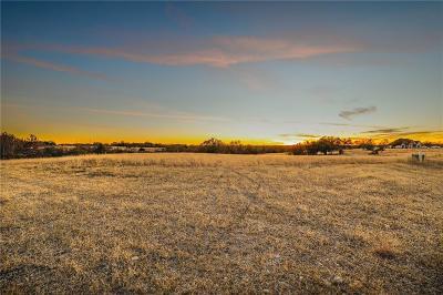 Weatherford Farm & Ranch For Sale: 108 Hicks Lane
