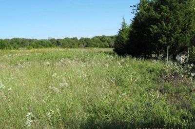 Rockwall County Farm & Ranch For Sale: 523 Kyser Spring Road