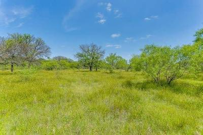 Jacksboro Farm & Ranch For Sale: Tbd 16 Hwy 148