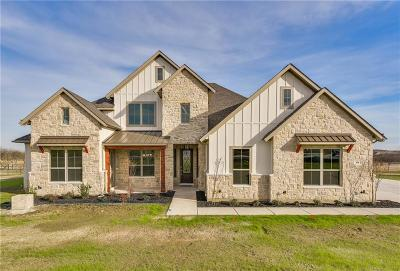 Parker County Single Family Home For Sale: 108 Maravilla Drive