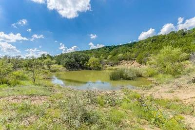 Gordon Farm & Ranch For Sale: Tbd-43 Lake Creek Rd