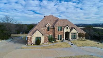 Parker County Single Family Home For Sale: 420 McDavid Terrace Drive
