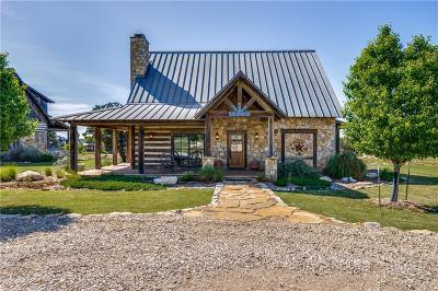 Palo Pinto County Single Family Home For Sale: 1165 Grandview Drive