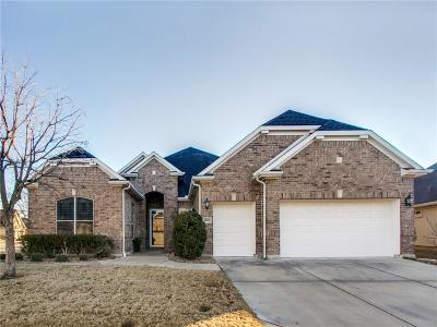 Denton Single Family Home For Sale: 8809 Landmark Lane