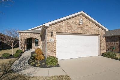 Frisco Single Family Home For Sale: 2894 Shore Shadows Lane