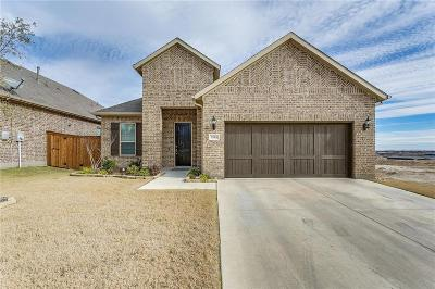 Fort Worth Single Family Home For Sale: 5565 Vaquero Road