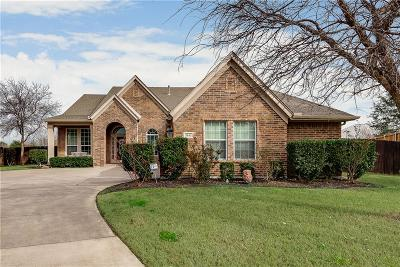 Grand Prairie Single Family Home For Sale: 2611 Waterfront Drive