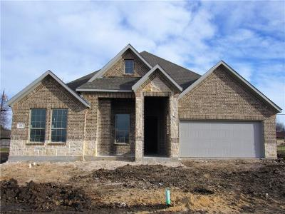 Decatur Single Family Home For Sale: 201 Windy Glen