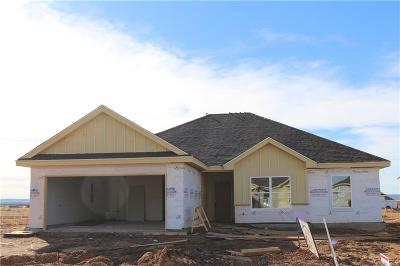 Abilene Single Family Home For Sale: 249 Sweet Pea Path