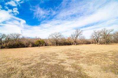 Parker County, Tarrant County, Wise County Residential Lots & Land For Sale: 383 Spring Valley Road