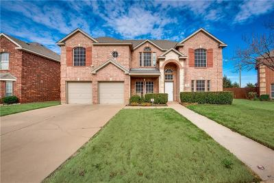 Grand Prairie Single Family Home For Sale: 2708 Potter