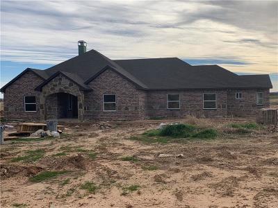 Springtown Single Family Home For Sale: 621 County Road 3696