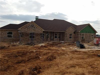 Springtown Single Family Home For Sale: 637 County Road 3696