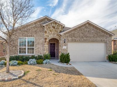 Frisco Single Family Home For Sale: 6393 Paragon Drive