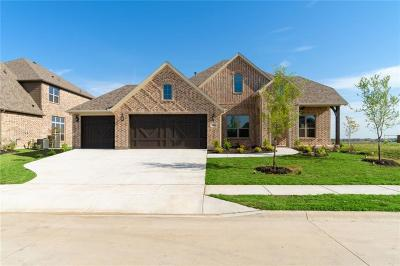 Prosper Single Family Home For Sale: 1000 Waterview Drive