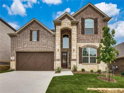 Lewisville Single Family Home For Sale: 1404 Lake Falls Terrace