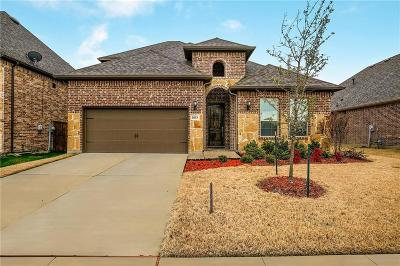 Murphy Single Family Home For Sale: 1033 Pampa Drive