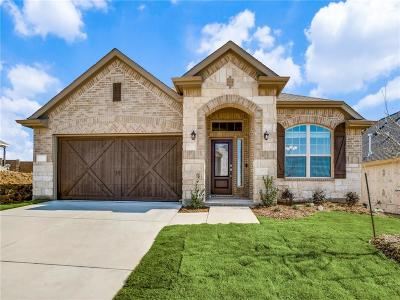 Lewisville Single Family Home For Sale: 1416 Lake Falls Terrace