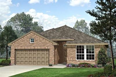 Single Family Home For Sale: 1037 Spanish Needle Trail