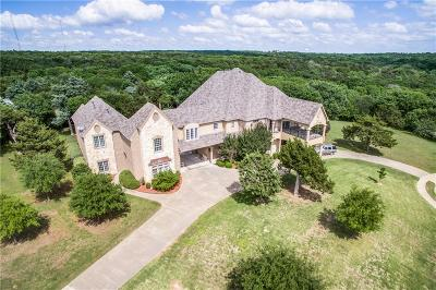 Cedar Hill Single Family Home For Sale: 1374 Overlook Circle