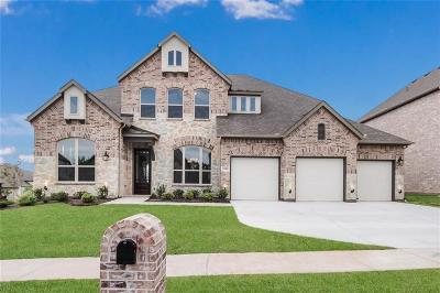 Mckinney Single Family Home For Sale: 1101 Bull Creek Drive