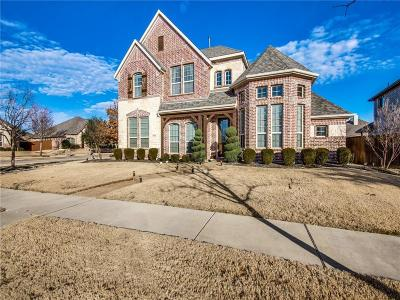 Frisco Single Family Home For Sale: 15816 Meadow Spring Drive