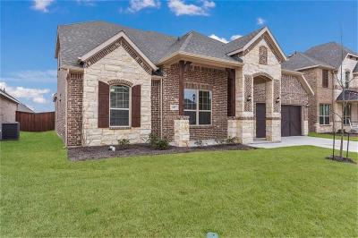Aledo Single Family Home For Sale: 613 Christel Sun Lane