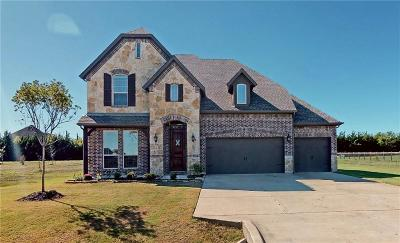 McKinney Single Family Home For Sale: 8008 Meadow Glen Drive