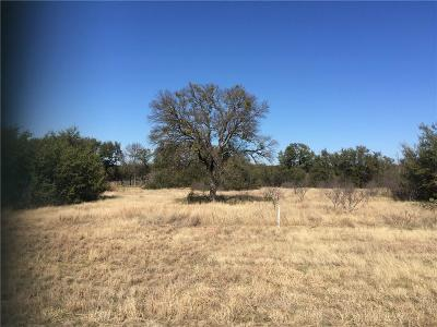 Possum Kingdom Lake Residential Lots & Land For Sale: Lt 291 Shooting Star Court
