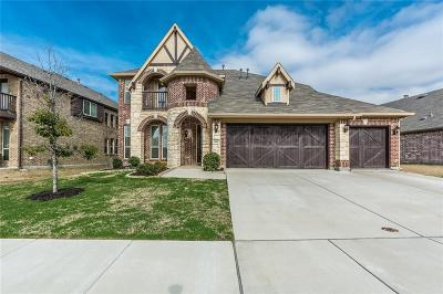 Denton County Single Family Home For Sale: 1601 Whistler Drive