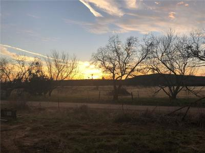Palo Pinto Residential Lots & Land For Sale: 475 N Wilson