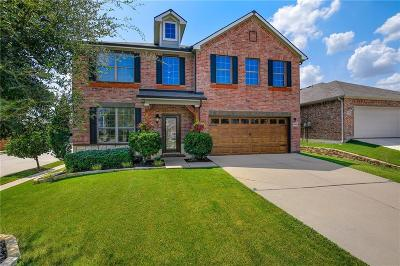 Fort Worth Single Family Home For Sale: 4244 Enchanted Rock Lane