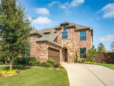 Keller Single Family Home For Sale: 1701 Grand Meadows Drive