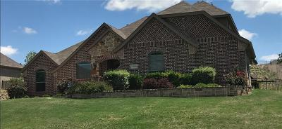 Fort Worth Single Family Home For Sale: 11048 Fernbury Drive