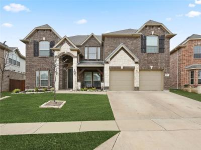 Little Elm Single Family Home For Sale: 13913 Sparrow Hill Drive