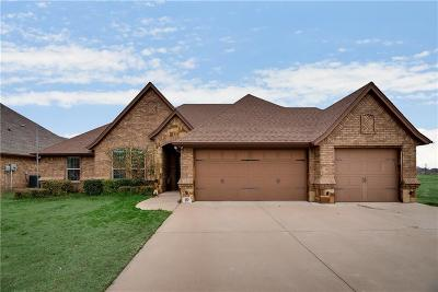 Granbury Single Family Home For Sale: 3613 Abes Landing Drive